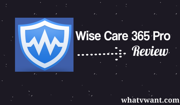 wise cleaner 365